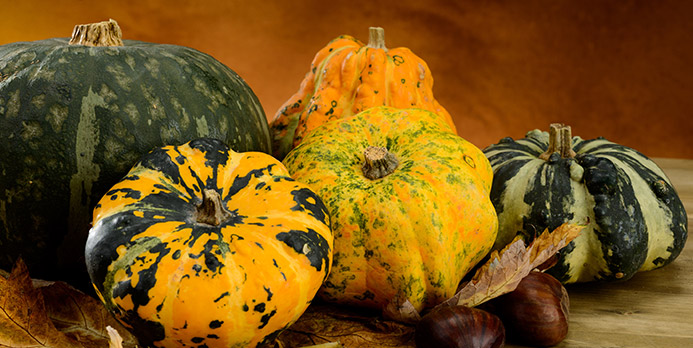 Unusual gourds and squashes not only make for unique displays, but they can last for months. Simply keep in a cool, dry area away from the sun.