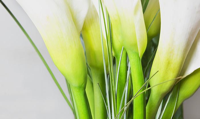 Margaret-McHenry-Wichita-KS-Fresh-Flowers-to-Brighten-up-Your-Home-June-2015-CALLA-LILY-ARRANGEMENT