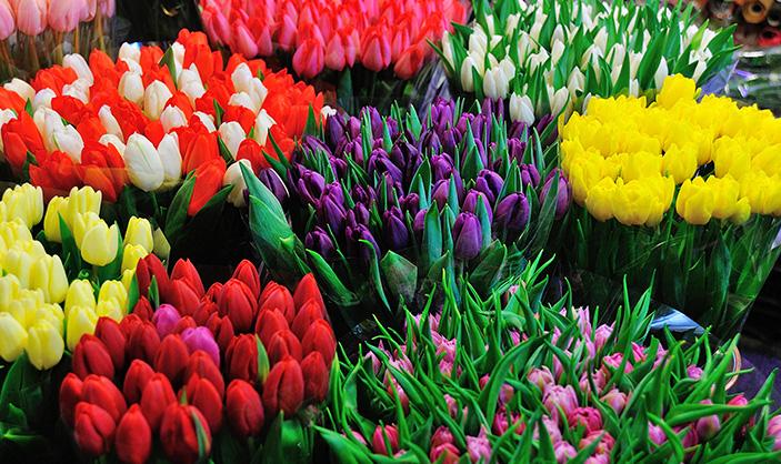 Margaret-McHenry-Wichita-KS-Fresh-Flowers-to-Brighten-up-Your-Home-June-2015-DUTCH-FLORAL-DISPLAY